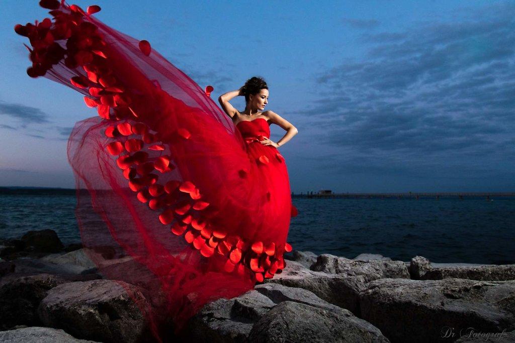 Sofi in Red
